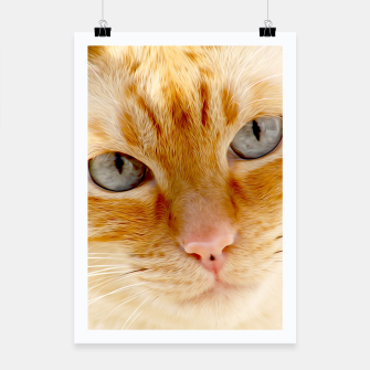 Cat with the blue eyes, cat face print  Poster miniature