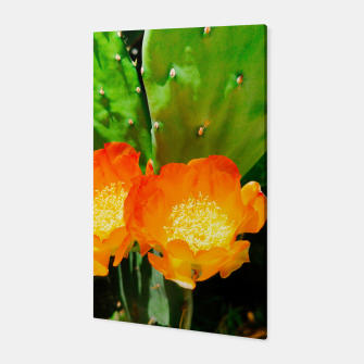 Thumbnail image of cactus blossom vibrant Canvas, Live Heroes