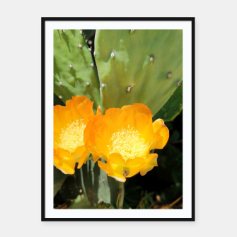 Thumbnail image of cactus blossom std Framed poster, Live Heroes