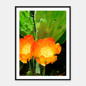 Thumbnail image of cactus blossom vibrant Framed poster, Live Heroes