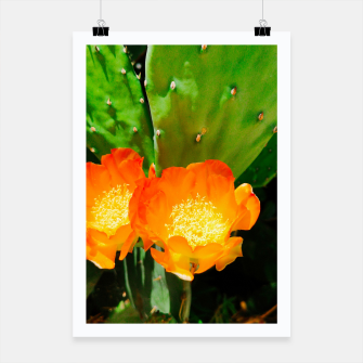 Thumbnail image of cactus blossom vibrant Poster, Live Heroes