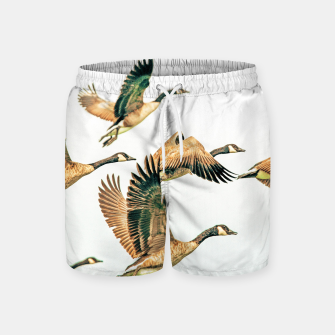 Thumbnail image of Fly Away II Swim Shorts, Live Heroes