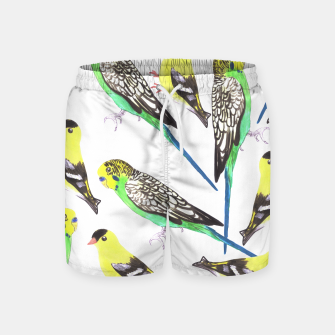 Miniatur Budgies and american goldfinches in watercolor  Swim Shorts, Live Heroes