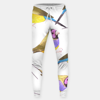 Miniatur Red headed male Gouldian finch or Erythrura gouldiae watercolor birds painting Sweatpants, Live Heroes