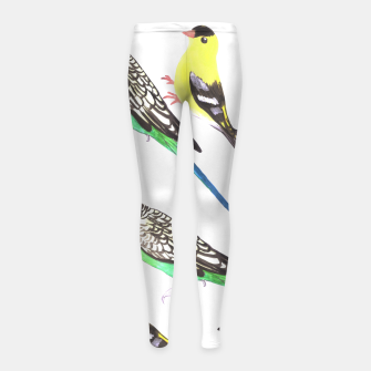 Miniatur Budgies and american goldfinches in watercolor  Girl's leggings, Live Heroes