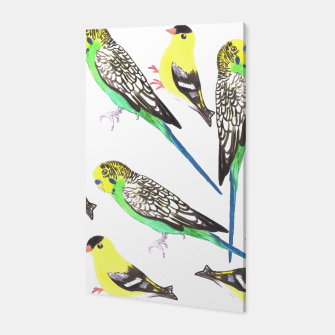 Miniatur Budgies and american goldfinches in watercolor  Canvas, Live Heroes