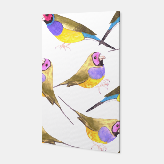 Miniatur Red headed male Gouldian finch or Erythrura gouldiae watercolor birds painting Canvas, Live Heroes