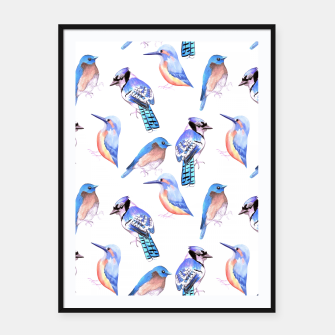 Thumbnail image of Birds kingfisher, bluejay, bluebird in tints and shades of blue Framed poster, Live Heroes