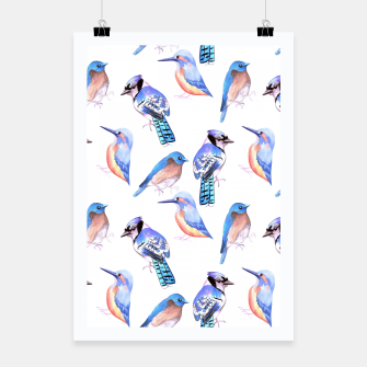 Thumbnail image of Birds kingfisher, bluejay, bluebird in tints and shades of blue Poster, Live Heroes
