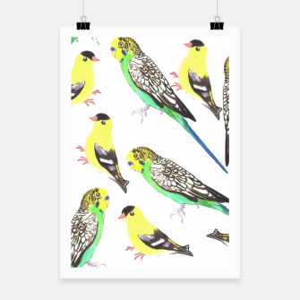 Miniatur Budgies and american goldfinches in watercolor  Poster, Live Heroes