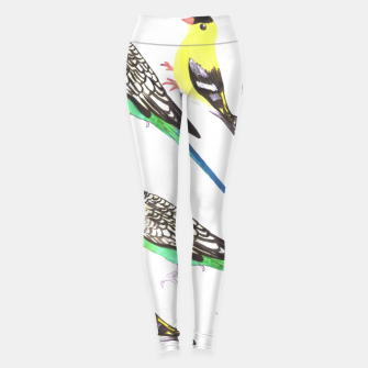 Miniatur Budgies and american goldfinches in watercolor  Leggings, Live Heroes