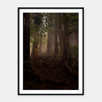Thumbnail image of forest Plakaty w ramie , Live Heroes