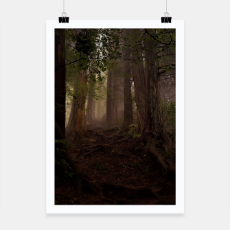 Thumbnail image of forest Plakat, Live Heroes