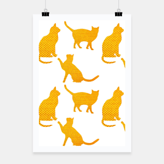 Golden cats- White Cartel thumbnail image