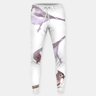 Miniatur American bushtits, hummingbirds and tufted titmouse watercolor  Sweatpants, Live Heroes