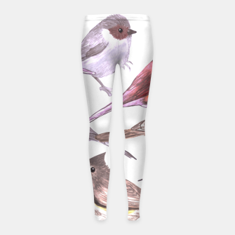 Thumbnail image of Wild titmouses bushtits and juncos in watercolor Girl's leggings, Live Heroes
