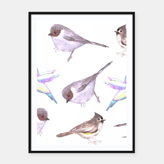 Miniatur American bushtits, hummingbirds and tufted titmouse watercolor  Framed poster, Live Heroes