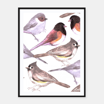 Miniatur Wild titmouses bushtits and juncos in watercolor Framed poster, Live Heroes