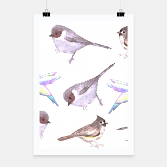 Miniatur American bushtits, hummingbirds and tufted titmouse watercolor  Poster, Live Heroes