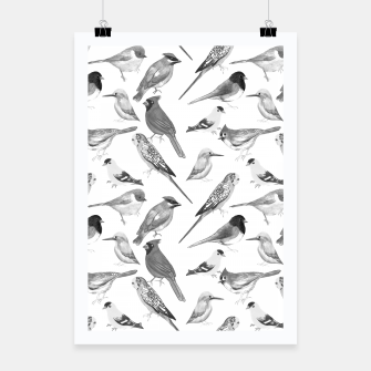 Thumbnail image of Black and white birds  Poster, Live Heroes