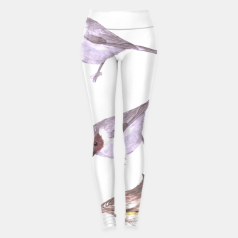 Miniatur American bushtits, hummingbirds and tufted titmouse watercolor  Leggings, Live Heroes