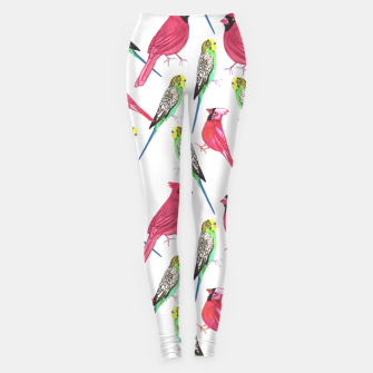 Miniatur Northern cardinal male and budgies watercolor birds painting Leggings, Live Heroes