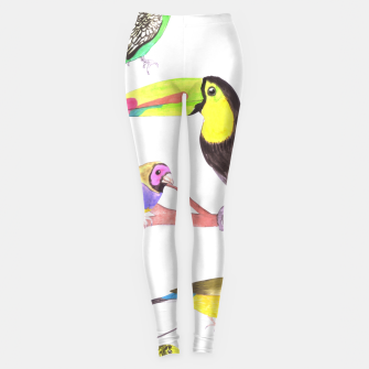 Thumbnail image of Colorful pet birds perched on a branch Leggings, Live Heroes