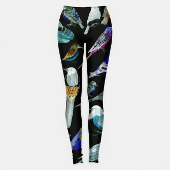 Birds of America- pets and wild birds  Leggings Bild der Miniatur