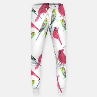 Miniatur Northern cardinal male and budgies watercolor birds painting Sweatpants, Live Heroes