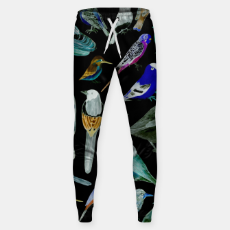 Birds of America- pets and wild birds  Sweatpants Bild der Miniatur