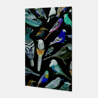 Birds of America- pets and wild birds  Canvas Bild der Miniatur
