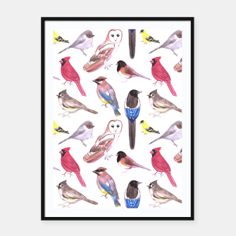 Thumbnail image of Birds of north carolina Framed poster, Live Heroes
