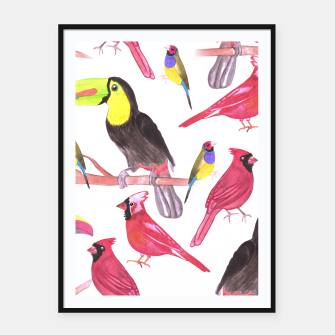 Thumbnail image of watercolor birds in tetrad color scheme watercolor-green, yellow, red, blue Framed poster, Live Heroes