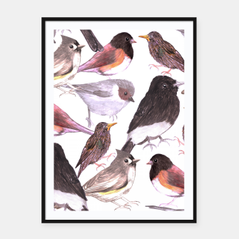 Thumbnail image of Wild birds Framed poster, Live Heroes