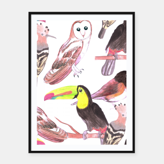 Thumbnail image of Large birds watercolor- toucans, juncos, hoopoe and barn owl Framed poster, Live Heroes