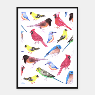 Thumbnail image of Colorful watercolor birds background in tetrad color scheme Framed poster, Live Heroes