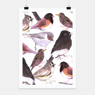 Thumbnail image of Wild birds Poster, Live Heroes