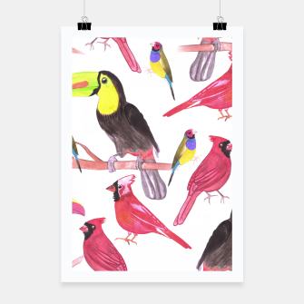 Thumbnail image of watercolor birds in tetrad color scheme watercolor-green, yellow, red, blue Poster, Live Heroes