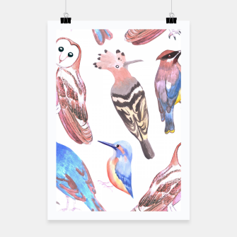 Thumbnail image of Endangered birds Poster, Live Heroes