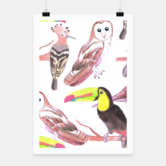 Thumbnail image of Large birds watercolor- toucans, juncos, hoopoe and barn owl Poster, Live Heroes