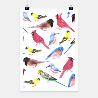 Thumbnail image of Colorful watercolor birds background in tetrad color scheme Poster, Live Heroes