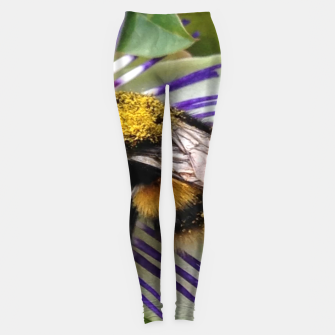 Bumblebee Leggings miniature