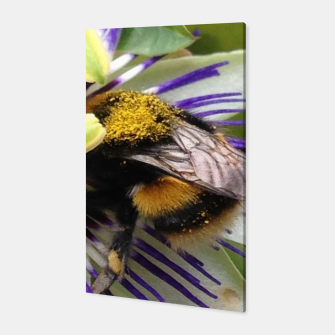 Bumblebee Canvas miniature