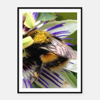 Bumblebee Framed poster miniature