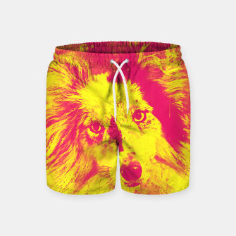 Thumbnail image of border collie dog 5 portrait wsyp Swim Shorts, Live Heroes