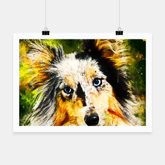 Thumbnail image of border collie dog 5 portrait wsstd Poster, Live Heroes