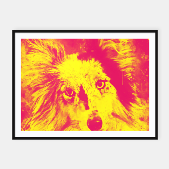 Thumbnail image of border collie dog 5 portrait wsyp Framed poster, Live Heroes