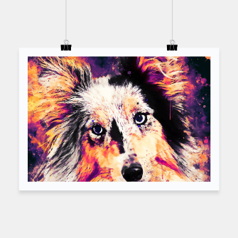 Thumbnail image of border collie dog 5 portrait wslsh Poster, Live Heroes