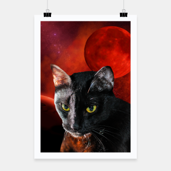 Miniatur Black Cat and Planets Poster, Live Heroes