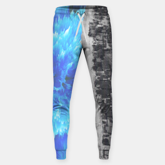 Thumbnail image of 094 Sweatpants, Live Heroes